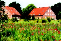 Cosy Hotels and Restaurants in Germany and Europe