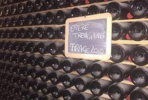 Italy Wine Routes