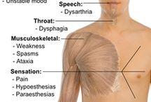Multiples Sklerose