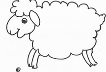 schapenhof