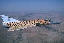 Cheetah Fighter