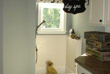 Pet Baths