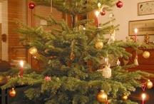 Christmas -trees worldwide