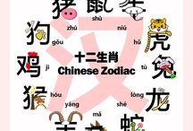 Chinese dierenriem
