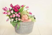 Newborn Pics / by Erin Anderson