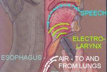 Laryngectomy Rehabilitation