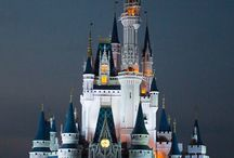 Disney World / by Ali-Andrea Johnson