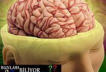 Beyin geliştirme