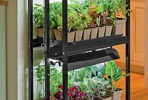 Indoor Garden ideas / Indoor Garden ideas