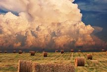 Fields of Grain & Haystacks