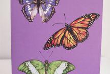 Craft Juice Butterflies / by craftjuice