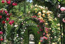 A.French Chateau Wedding