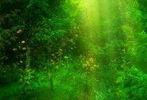 Green ~ Zöld