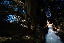 Bridal / by Ryan Hutson