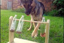 Hundeleiker