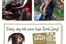 Little Beast Bar / Our newly launched organic pet shampoo bar, available in selected Waitrose stores and online...  http://www.littlesoapcompany.co.uk/littlebeast-1/