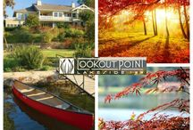 Hot Springs Arkansas Fall Foliage: Leaf Peepers Dreams / Join us in Hot Springs, Arkansas for some of the best fall foliage possible! What a fun time of year. / by Lookout Point Lakeside Inn