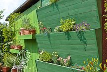 Garden ideas / All things green and gardeny