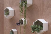 Planter på veggen
