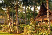 Bali / by a matter of taste