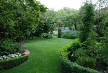 Outdoor Space / by Molly Galloway