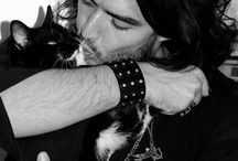 Celebrities and Cats / by LUXE Paws