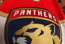New Cats, New Look / The Panthers unveiled their new logo on June 2, 2016! / by Official Florida Panthers