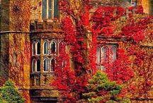England / by Ashley Nathe
