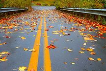 Wallpaper Autumn