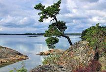 Schweden ♡