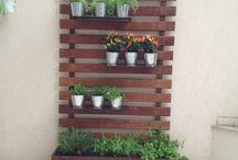 Decoração de plantas