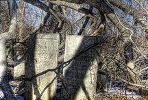 Cemeteries  / by Lori Garis Ruth