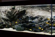 aquariumscaping