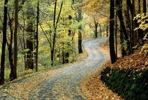 Bentornato autunno