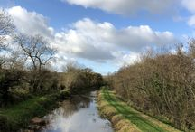 A perfect day for a walk along the river Barrow in Bangelstown, Co.Carlow,Ireland