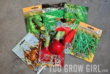 Let's Grow a Garden / by Annie Sparks