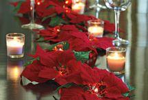 Table Decoration with Poinsettia