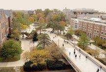 uni campuss