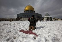 Snow in Middle East after 112 years / in 2013 winter, snow fell in Middle East after 112 years. Enjoy the photos...