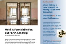Disaster Recovery/Federal Emergency Management Association (FEMA) / Special topics pertaining to FEMA and disaster recovery after a natural disaster occurs.