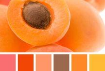 SS2019_orange
