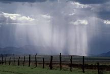 Drip drop drizzle ☂