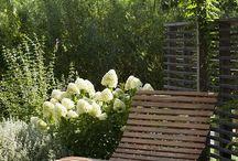 Hagemøbler // Garden furniture // Sitteplasser / Hagemøbler