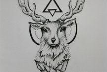 Kos - Rénszarvas - Deer
