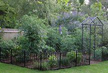 Grasshopper Homestead Garden / Cottage Garden Ideas