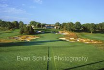 US Open Venues / This is a collection of US Open golf courses