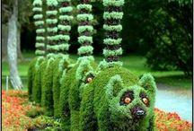 Növény szobrok