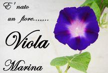 ViVa la ViTa !!!!!!!!!!!! / gioie della vita
