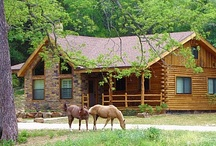Cabin / yes, a cabin in Northeran MN is very desirable to me ♥  / by Twila Simonson