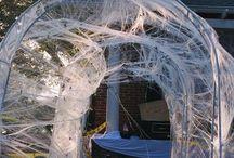 Halloween  / by Brianna Smith